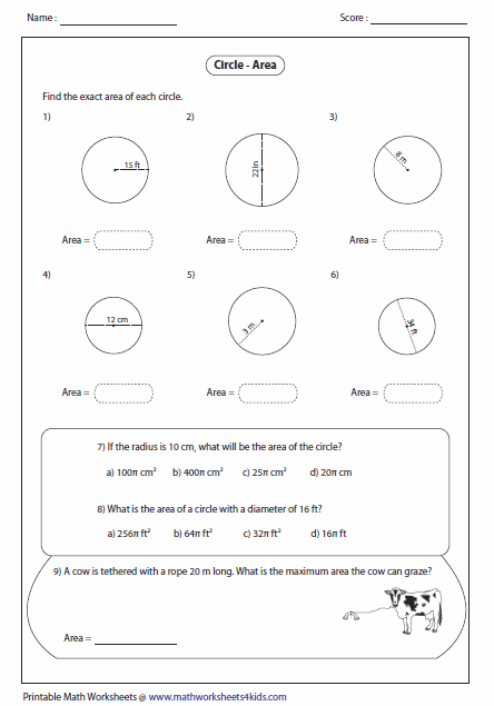 Area Of A Circle Worksheet Free Worksheets Library | Download and ...
