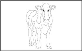 Animal Coloring and Tracing Pages