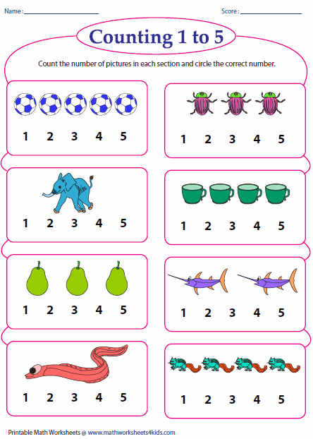 picture regarding Printable Counting Worksheets titled Counting Worksheets