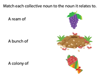 Collective Nouns | Matching
