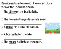 Rewrite the sentence with the correct plural noun