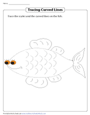 Tracing Curved Lines on a Fish