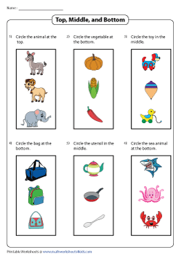 Top and Bottom Worksheets