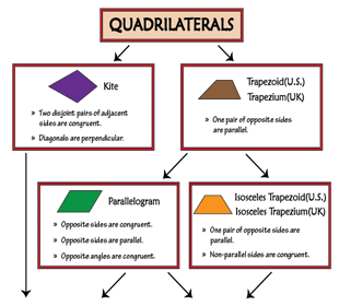 Quadrilateral Properties Chart