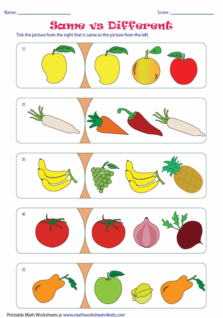 Similar Objects Worksheet : www.imgarcade.com - Online ...