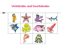 Cut and paste activity | Sea animals