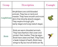 picture regarding Free Printable Worksheets on Vertebrates and Invertebrates called Vertebrates and Invertebrates Worksheets Clifying Pets