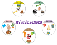 Five senses and their uses - Chart