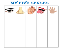 Five senses column template