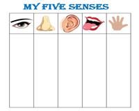 The Five Senses Worksheets - 16+ Free Printable 5 Senses Worksheets For Kindergarten Gif