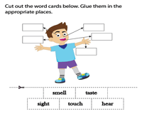 Cut and paste activity (word cards)