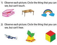 The sense of sight worksheets
