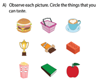 The sense of taste worksheet