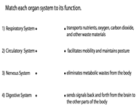 Organ Systems and their Functions