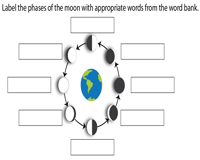 Label the Phases of the Moon