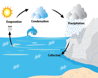 Water Cycle Chart | Four Step Process