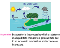 Water Cycle Definition Chart