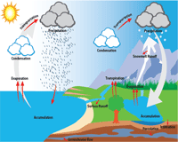 Water Cycle Vocabulary Chart