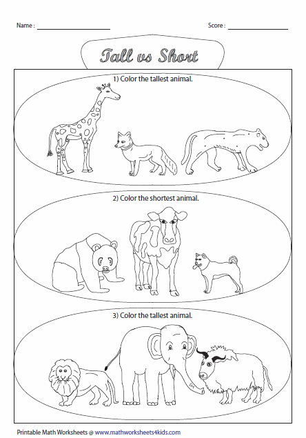 math worksheet : tall and short worksheets : Short A Worksheets For Kindergarten