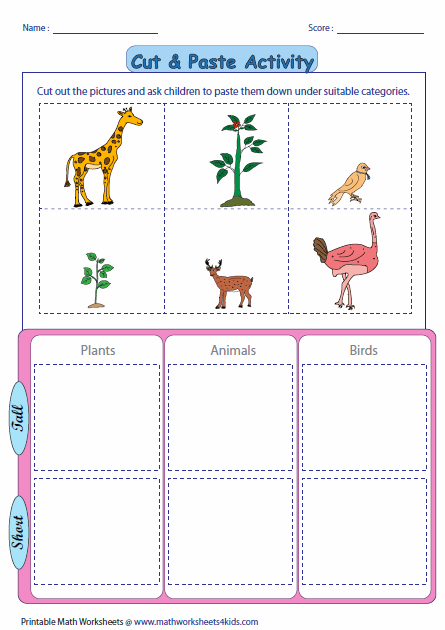 math worksheet : tall and short worksheets : Short A Worksheets Kindergarten