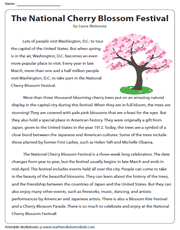 National Cherry Blossom Festival | Reading Comprehension